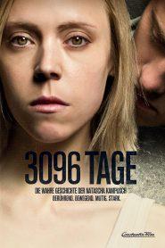 3096 dni online