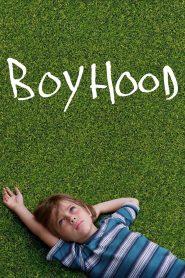 Boyhood online