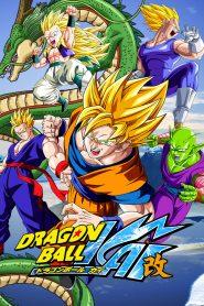Dragon Ball Kai online
