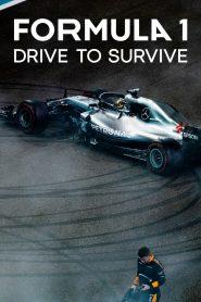 Formula 1 Jazda o życie online