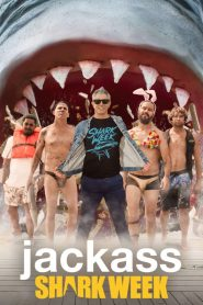 Jackass kontra rekiny online