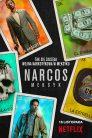 Narcos Meksyk online