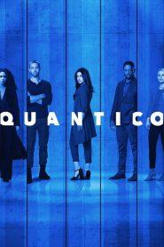 Quantico online