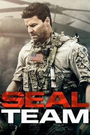 SEAL Team online