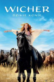 Wicher 3 dzikie konie online