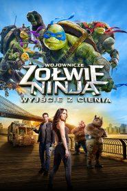 Wojownicze Żółwie Ninja Wyjście z cienia online